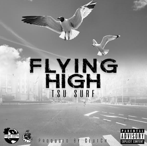 tsu surf birds